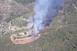 Detenido un hombre como autor del incendio de Estepona cuando intentaba quemar una colmena