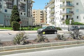 Jardineras descuidadas en avenida Vuit d'Agost