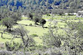 Los propietarios de fincas respaldan legalizar casas en suelo rústico pero solo si son antiguas