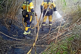 Rebrote en el incendio de Sant Llorenç