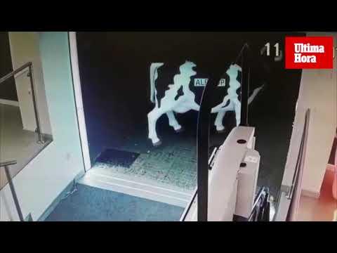 Detenido por robar una vaca en la entrada de una tienda de la Playa de Palma