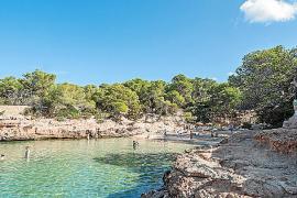 Sant Antoni renueva el certificado europeo EMAS por la gestión medioambiental de sus playas