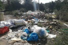 Sant Josep inicia la limpieza de unos terrenos en Platges de Comte