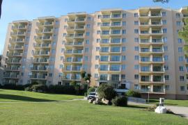 Una mujer se precipita desde un primer piso de un hotel del Puerto de Alcúdia