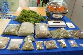 La Policía Nacional desmantela un laboratorio de marihuana en Sant Carles