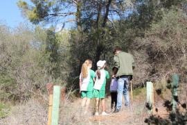 Un total de 80 alumnos han participado en el programa de reforestación del bosque de Bellver