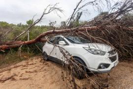 El Govern solicita que se declare Sant Antoni zona afectada gravemente por una emergencia