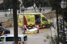 Fallece una mujer y una niña resulta herida en Palma al caerles encima una palmera
