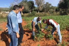 El PP se compromete en Ibiza a recuperar las medidas contenidas en la Ley Agraria de 2015