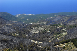 El Govern organiza en Eivissa un  curso sobre el uso del fuego táctico
