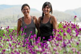 La alianza de las flores y la agricultura en 'El camino'