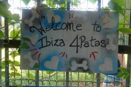 Ibiza Cuatro Patas necesita un nuevo terreno