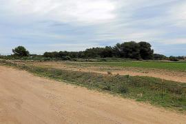 El parque solar de la Mola continúa pendiente de la decisión del Consell de Formentera