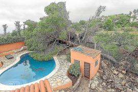 Los propietarios afectados por la DANA en Sant Antoni pueden pedir las ayudas del Govern