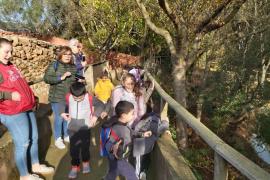 Alumnes d' Infantil del CEIP Anselm Turmeda varen visitar Natura Parc
