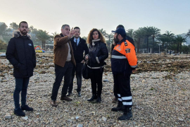 El Consell de Ibiza ofrece su ayuda a los municipios afectados por la borrasca 'Gloria'