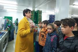 Alumnes de 6è de primària del CEIP Es Puig de Lloseta, varen visitar Grup Serra i Agromallorca